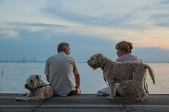 Enjoying the Summer evening (Infomastern) Tags: goodnightsunset malm vstrahamnen dog hund mnniskor people exif:model=canoneos760d geocountry camera:make=canon geocity camera:model=canoneos760d exif:isospeed=250 geostate geolocation exif:lens=efs18200mmf3556is exif:focallength=35mm exif:aperture=40 exif:make=canon