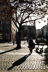 Brussels (Peter Gutierrez) Tags: bruxelles bruxellois urban city urbain ville stad shadow dark light parc park contrast stedelijke schaduw donker licht urbaine ombre sombre lumire contraste trees peter gutierrez petergutierrez film