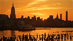 New York City Sunrise (Hieroglyphics...) Tags: nyc newyorkcity midtownmanhattan empirestatebuilding sunrise goldenmoment goldenhues goldenreflection reflections waterreflections hudsonriver concretejungle newyork newyorkskyline skyline nywaterways nytaxi