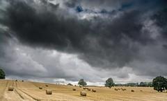 Herefordshire sky (Chris Bertram) Tags: birthday cradley family herefordshire malvern theoldrectory