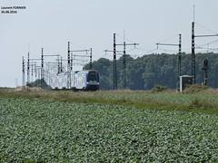 Z26500 (LrtBZH) Tags: train ter z26500 sncf paris montparnasse gazeran rambouillet