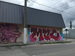 (Brian Kuhl) Tags: art graffito wall building littlehaiti miami florida miamidadecounty street