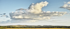Cloud Above the Distant Downs (stevedewey2000) Tags: sigmadp2 merrill landscape sptaeast salisburyplain grasses grassland cloudscape clouds downs 2351 widescreen