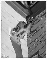 Gargouilles (6) (Phil2No) Tags: et saintantoinelabbaye gargouille