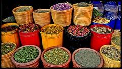(ceciliacatani1) Tags: colori souk morocco marocco marrakech spezie