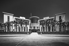 Galveston County Courts M (Mabry Campbell) Tags: 2016 galveston houstonphotographer mabrycampbell september texas architecturalphotography architecture architecturephotography blackandwhite building commercial commercialphotography courthouse exterior fineart fineartphotography government image monochrome photo photograph photographer photography f71 september32016 20160903campbellh6a6917 17mm sec 100 tse17mmf4l