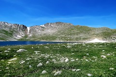 Rocky and Wild Flower Carpet (Patricia Henschen) Tags: summitlake denvermountainparks park lake mountains alpine mtevansscenicbyway mtevans scenicbyway idahosprings colorado