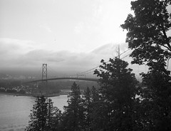 Lions Gate Bridge from View Point (jfearer_photo) Tags: 500px lions gate bridge stanley park pentax 67 delta 100 d76 ilford film 120 medium format clouds water trees view point