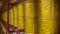 Tibet, prayer wheels at the monastery (China), 06-2016, 50 (Vlad Meytin, vladsm.com) (Vlad Meytin | Instagram: vmwelt) Tags: chengguan china khimporiumco meytin tibet tibetan vladmeytin art artgallery artists artphoto artworld asia buddhism carlzeiss chinese fe5518 gallery gold highaltitude local monastery photography photographyart pictures prayerwheel religion religious sony sonya7 sonyalpha summer symbols temple traditional vladsm vladsmcom vmwelt yellow zeiss     outdoor greatphotographers