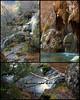 Ser natural es una pose demasiado difícil (Cani Mancebo) Tags: españa naturaleza nature spain cuenca canimancebo nacimientoríocuervo