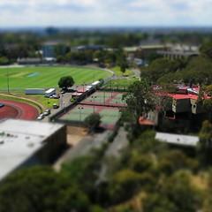 #tiltshift #tenniscourt #university #melbourne #green #colours #city #panorama #landscape (egicrazy) Tags: city panorama green landscape university colours melbourne tenniscourt tiltshift