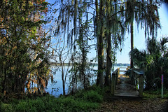 DOCK AND LAKE VIEW (MOOSE COLLECTOR) Tags: nature florida naturewalk topazlabs circlebbarreserve canoneost1i lakekland