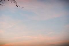 """Lets get cold together"" (My . December) Tags: camera city pink blue light sunset sky tree film nature leaves clouds analog 35mm vintage georgia season lens landscape photography 50mm evening md soft kodak minoltax700 lofi young roll expired scape amateur mydecember tbilisi f17 kodakfarbwelt200 nikolozjorjikashvili movely"