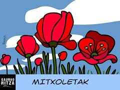 #21 Mitxoletak (pernan) Tags: dibujo marrazkia euskaraz mitxoleta ilustrazioa gaurkohitza