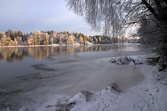 Beautiful morning (DavidAndersson) Tags: winter sunlight snow ice water sweden vnersborg vargn tamron18200f3563