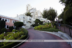 Lombard Street, San Francisco (Naomi Rahim (thanks for 2 million hits)) Tags: sf sanfrancisco california road ca street city travel usa america photography nikon streetscape crooked russianhill lombardstreet hairpinbend 1116mm nikond7000 naomirahim