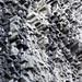 Le forme curiose della parete rocciosa chiamata Los Ladrillos