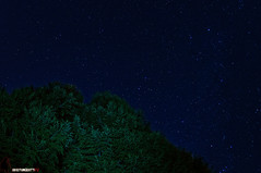 Winter stars (furanda) Tags: stella light 6 lightpainting verde gelo pine alberi photoshop painting torino star nikon lab post blu d astro led fisheye via piemonte adobe cielo astrofotografia di cs 5000 nikkor provincia albero pino inverno turin montagna piedmont freddo nero f28 notte topaz dx lightroom notturno stelle adjust pini cs4 stellata 105mm stellato nital produzione atri torcia cs6 dominante giaveno lattea d5000 nikon105mmf28dxfisheye postproduzionje