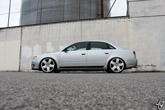 A4 B7 OEM+ (- AJ Photography- / Evolution Cars) Tags: low static a4 audi b7 stance oem oemplus kwsuspension
