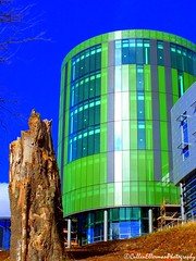 RGU Saturation (Rick Ellerman) Tags: blue colour building tree university picasa stump saturation stunning colourful rgu robertgordonuniversity