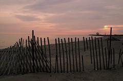 Holding back the sunset (L*Ali) Tags: winter sunset cold beach water skyline fence sand feather lakeontario lali darlingtonprovincialpark sigma1770mmf28macro nikond7000