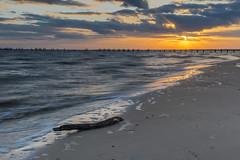 Driftwood Sunset (Lane Rushing) Tags: ocean sunset beach gulfofmexico mississippi sand nikon driftwood passchristian d600 mississippigulfcoast 2470mmf28 herowinner storybookwinner