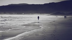 Long romantic walk on the beach... alone