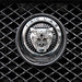 "2013 Jaguar XFR grill jaguar emplem.jpg • <a style=""font-size:0.8em;"" href=""https://www.flickr.com/photos/78941564@N03/8572026667/"" target=""_blank"">View on Flickr</a>"