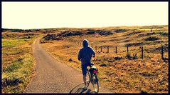 Netherlands 15/19 August 2012 (StevenFonico) Tags: holland netherlands bike bicycle texel frya