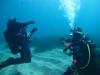 Aquanature sortie technique N2-N3 le Petit Mejean_21