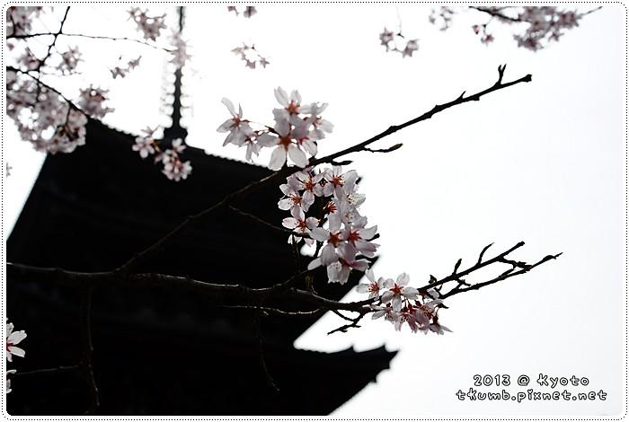 醍醐寺 (3).jpg