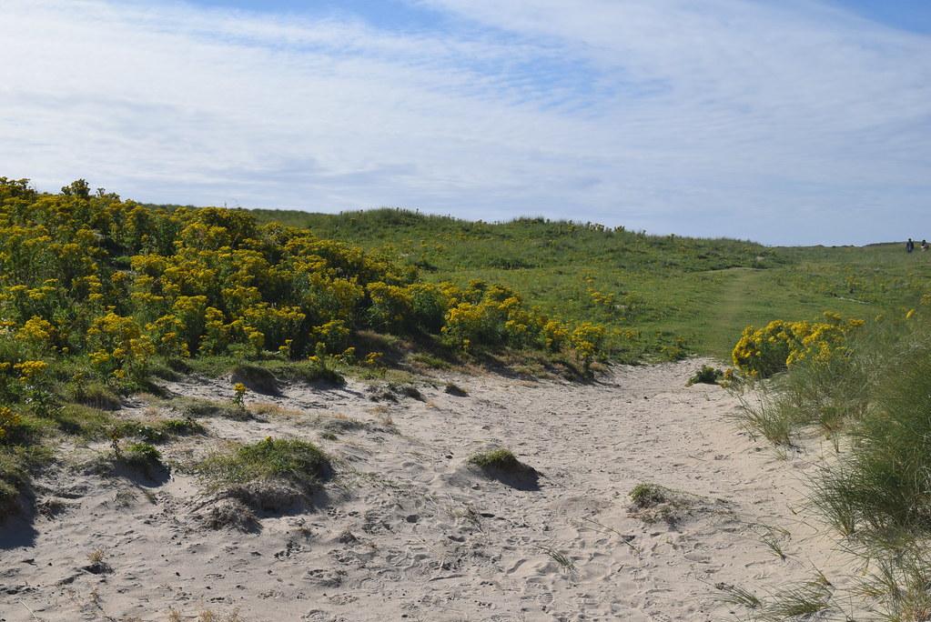 Ardroil Beach, Bay of Uig, Isle of Lewis