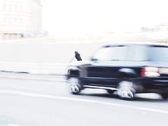 (blazedelacroix) Tags: helios 44 russian lens blur motion stockholm car bicycle manualfocus blazedelacroix woman black