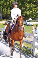 IMG_2530 (SJH Foto) Tags: horse show rider action shot dressage wtc walk trot canter teens teenagers girls