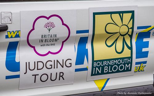 2016 Britain in Bloom Judging 60