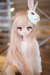 Bunny. (lightlybattered) Tags: mdd custom modded repaint mini dollfie dream volks ddh01 shiro no game life