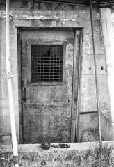 The Door (greenschist) Tags: canonfd50mmf18sc usa canonae1program blackwhite arizona fomaretropansoft320 superior film analog