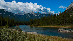DSC_0008 (Adrian De Lisle) Tags: banffnationalpark banff mountains bowriver