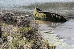 D3287-Esqueleto en la orilla (I) (Eduardo Arias Rbanos) Tags: composiciones compositions barca smallboat orilla bank edge seashore mar sea water agua muerte death pasado past ruina ruin eduardoarias eduardoariasrbanos nikon d300