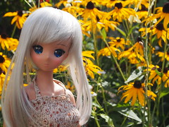 Chitose's new dress ^^ (sh0pi) Tags: chitose smart doll smartdoll danny choo culture japan tan tanned skin