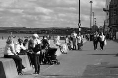 sunny day at Porty 02 (byronv2) Tags: edinburgh edimbourg scotland blackandwhite blackwhite bw monochrome candid street peoplewatching portobello beach sea rnbforth firthofforth forth river riverforth northsea autumn sunny coast coastal promenade seawall seat seated sitting