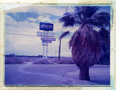 North Shore, CA (moominsean) Tags: california sign polaroid desert graphic palm liquor socal northshore instant 4x5 crown bait soco saltonsea graflex type559 expired022005