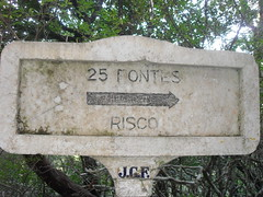 SDC12482
