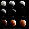Lunar Eclipse Sequence Dec 10-2011-JJ (1) (jaijaibkk) Tags: moon lunareclipse พระจันทร์ จันทร์ทรุปราคาเต็มดวง