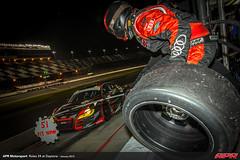 APR-Motorsport-Rolex-24-2013-126