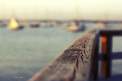 Happy Fence Friday! (nina's clicks) Tags: wood sea rio zeiss fence river boats uruguay botes mar madera bokeh ze puntadeleste hff planart1450