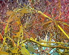 Thicket (Pickford Studios) Tags: birthday christmas wedding abstract modern print restaurant hotel design photo office photos anniversary contemporary quality interior wallart special photographs photograph gift birthdaygifts presents present birthdaygift weddinggift interiordesign designers birthdaypresent christmaspresents christmaspresent birthdaypresents christmasgift christmasgifts weddingpresent weddinggifts interiordesigns highquality anniversarygift weddingpresents interiordesigners anniversarypresent anniversarygifts anniversarypresents pickfordstudios pickfordstudiosltd