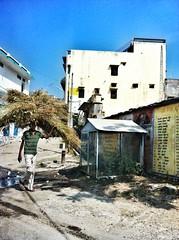 India // Rajasthan 2012-11-04