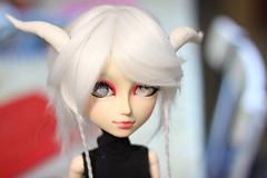 Touya 1.3 (mymuffin_15) Tags: canon eos rebel 50mm dal carving full wig pullip custom hime usagi tantus isul obitsu taeyang t1i