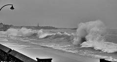 IMG_7842_La digue (gerardstmalo) Tags: waves vagues